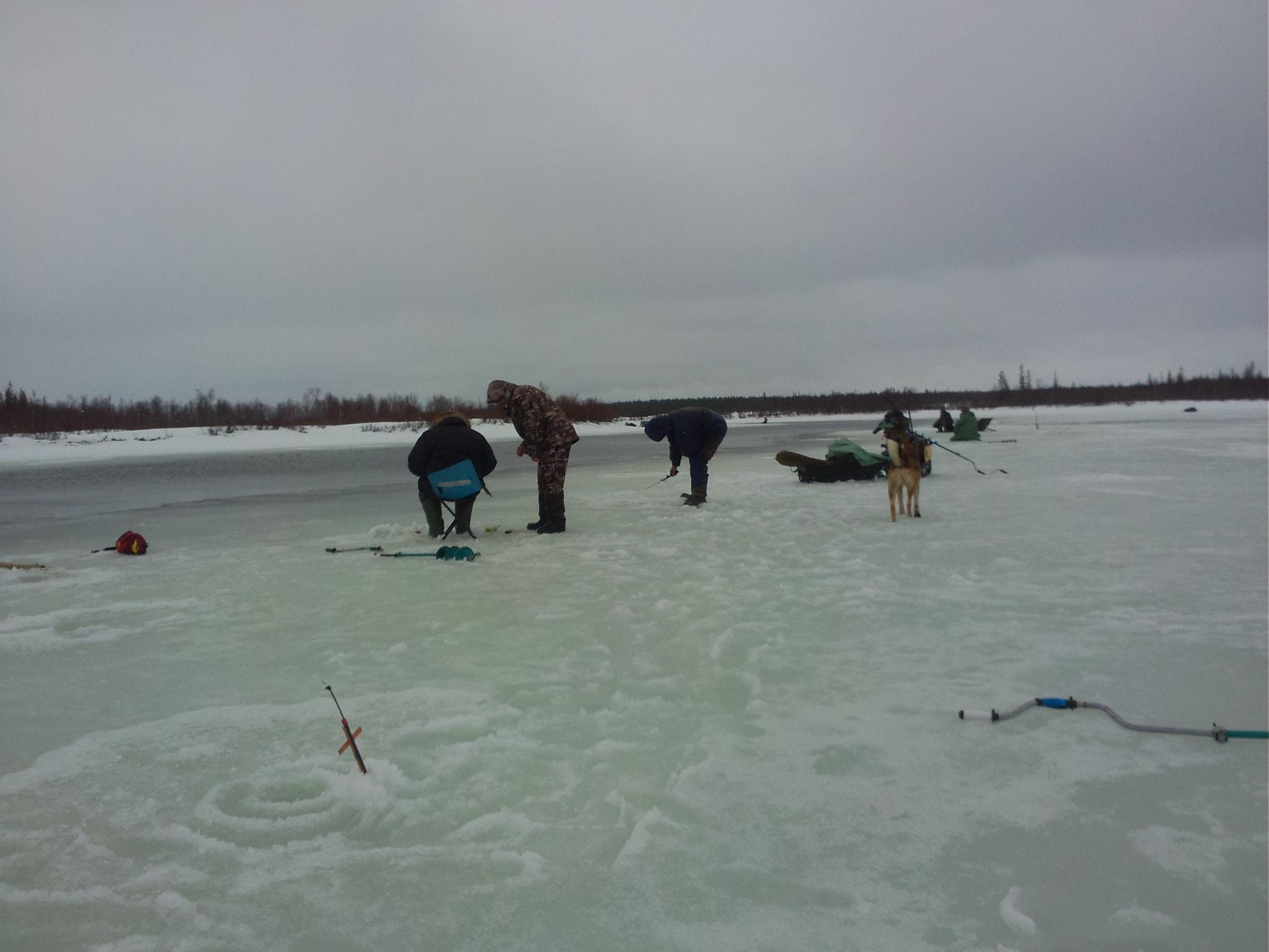 http://murman-fishing.ru/forum/download/file.php?id=87038&mode=view
