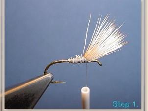 blond-wulff-002