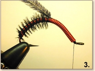 bow-juan-worm-004