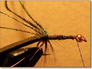 caterpillar-004