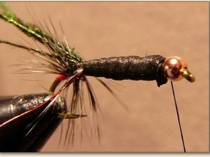 caterpillar-005