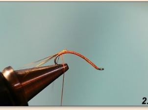 easypeasy-mayfly-003