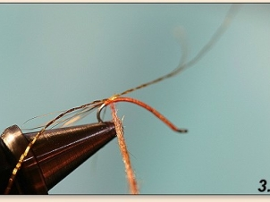 easypeasy-mayfly-004