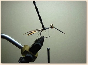 hummingbird-006