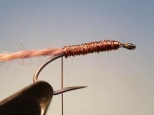 killer-bug-1-004