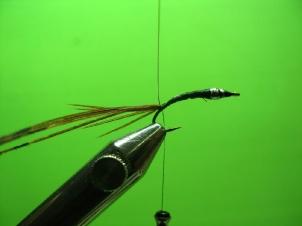 mayfly-nymph-003