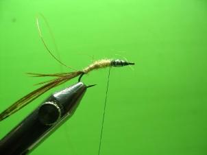 mayfly-nymph-004
