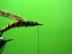 mayfly-nymph-006