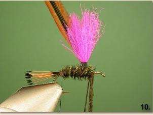 peacock-parachute-010
