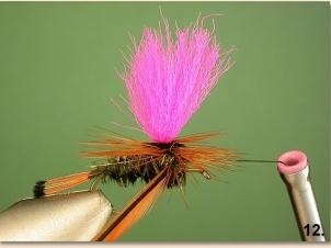 peacock-parachute-013