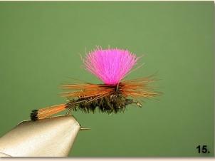 peacock-parachute-016