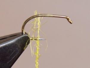 yellow-sally-wet-003