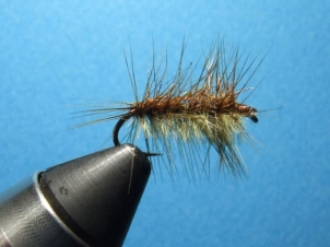 1000-leg-worm-001