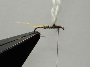 adams-parachute-005_0