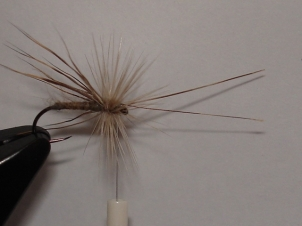 everybodys-caddis-009
