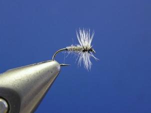 grey-duster-001