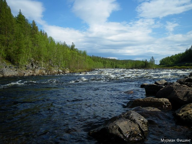 картинки река: